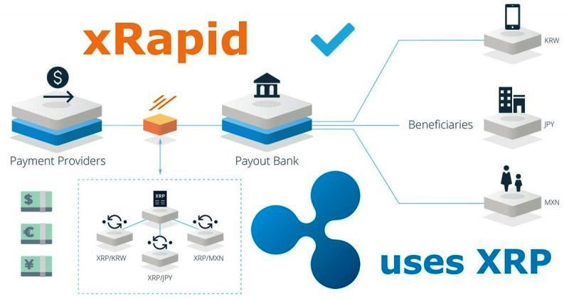 Banks Are Not Using XRP Because There's No Regulatory Clarity, According To Ripple