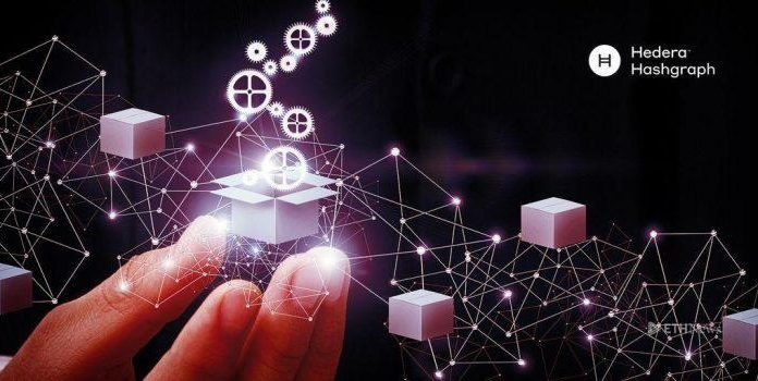 Hedera Hashgraph Mainnet Open For Early Testing