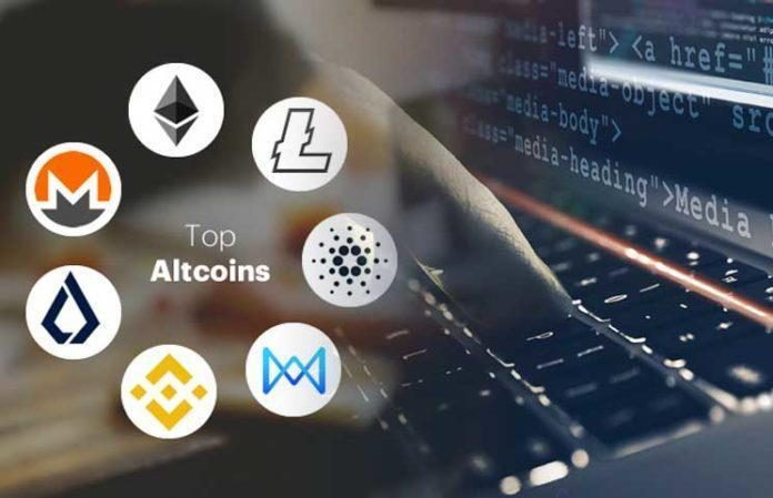 Reasons For Supporting Crypto In 2019