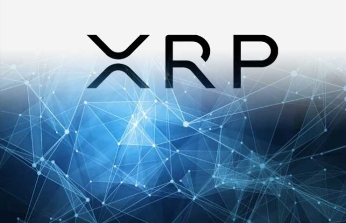 "XRP Army Of Fans Slams Popular Online Publication – CCN Strikes Back: ""Ripple Fanatics, Garlinghouse Sycophants"""