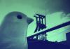 Polkadot announces new experimental network Kusama