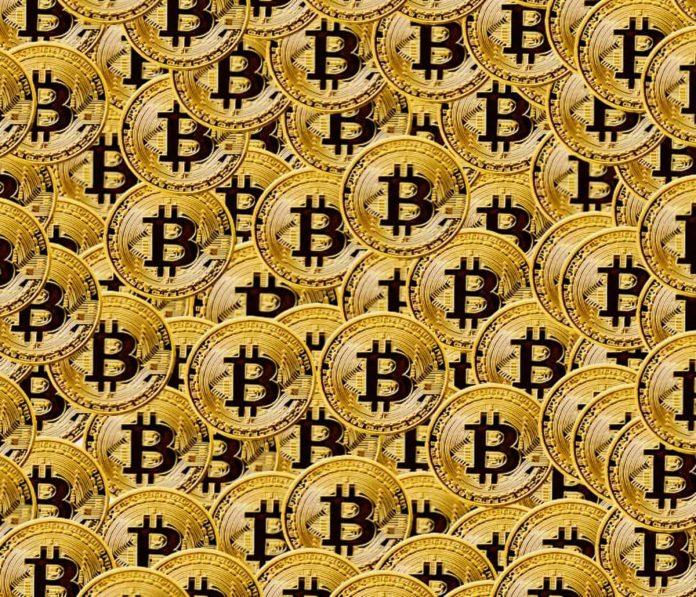 many bitcoins