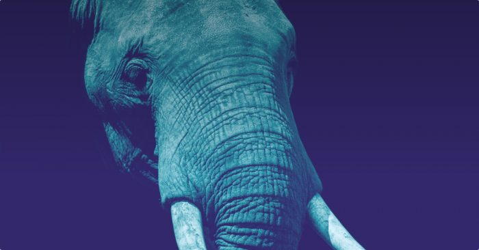 The elephant in the room at San Francisco Blockchain Week
