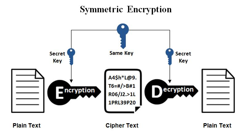 Network Security Using Cryptography: Everything you need to know