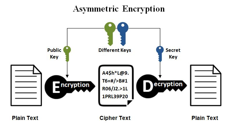 Network Security Using Cryptography
