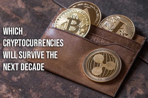 wallet filled with physical cryptocurrencies