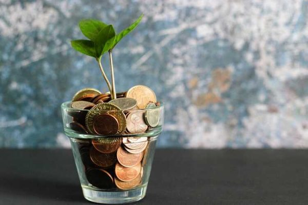 plant grows in glass full of coins