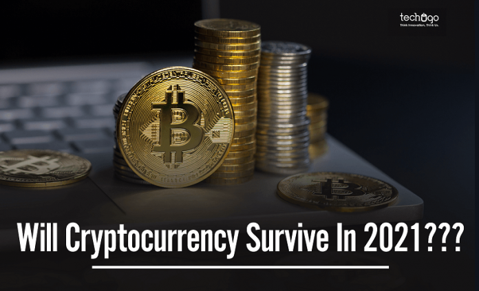 will cryptocurrency survive