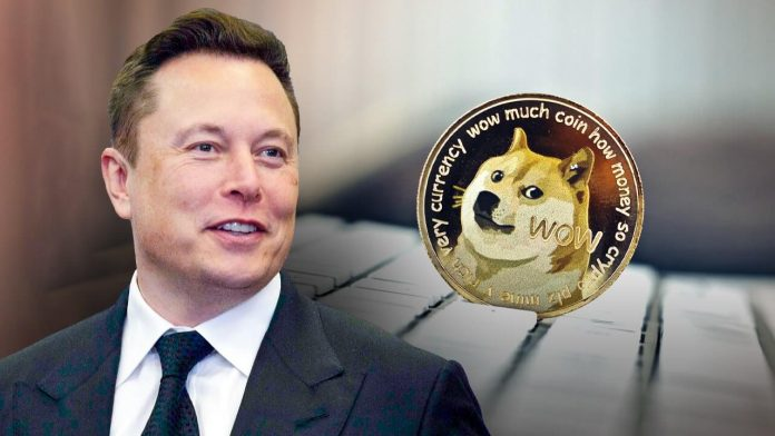 Dogecoin Price Drops After Elon Musk Appearance On Saturday Night Live